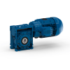 Worm geared motors - Serie W